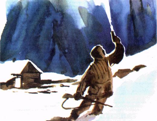 Фото №1 - Двойной полярный вариант