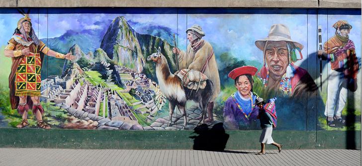 Фото №2 - Национальное достояние: священный верблюд инков