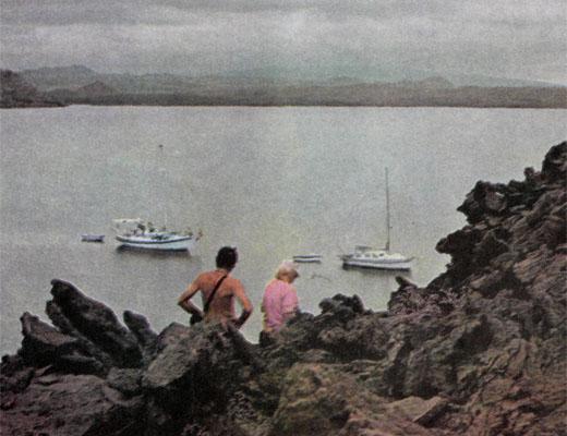 Фото №1 - Про краснозобых фрегатов, остров «голубых лапок» и «аквариум Айялы»