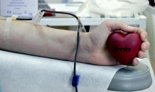 Фото №1 - Двум клиникам Петербурга не хватает донорской крови