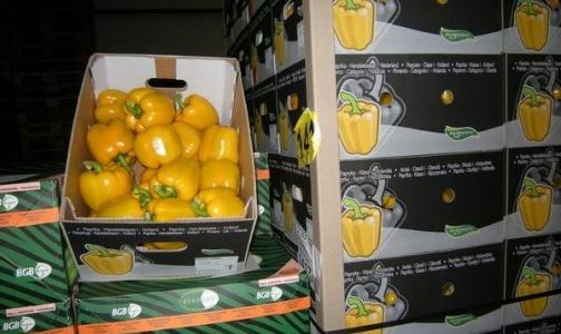 Фото №1 - Запрет на ввоз европейских овощей поддержало большинство россиян