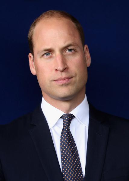 Фото №2 - Негусто, но не пусто: принц Уильям признан самым сексуальным лысым мужчиной в мире
