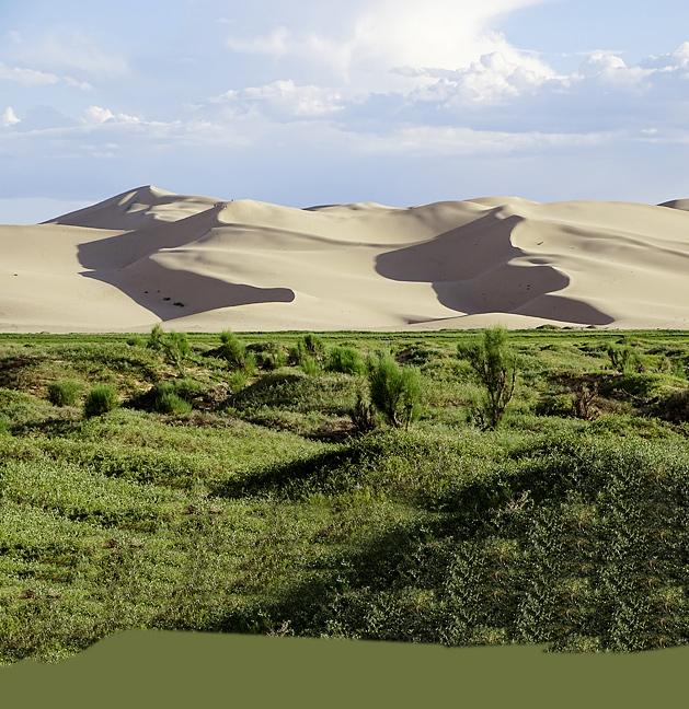 Фото №4 - Автопробег: открытый простор пустыни Гоби