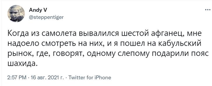 Фото №13 - Посол России назвал талибов «адекватными мужиками». В соцсетях ответили шутками