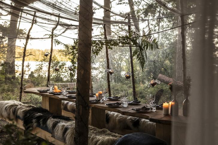 Фото №1 - Эко-отель Stedsans in the Woods в Швеции