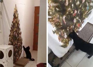Фото №2 - Настойчивая кошка не оставляет попытки свалить нарисованную елку (видео)