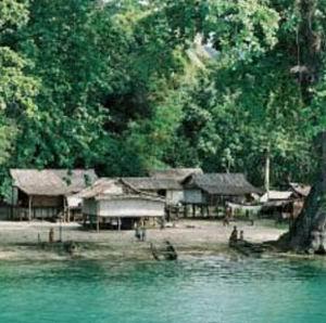Фото №1 - Папуасы хоронят больных СПИДом заживо
