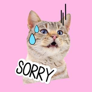 Фото №7 - Тест: Выбери мартовского котика и узнай, сколько человек безответно в тебя влюблены
