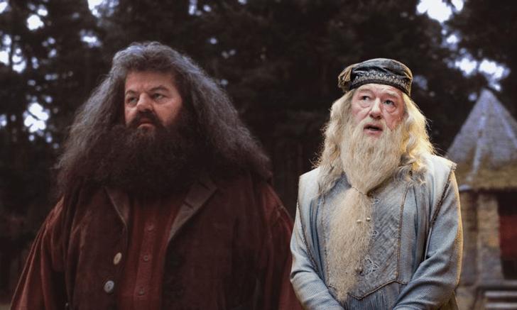 Фото №2 - Топ-10 самых прикольных бромансов в «Гарри Поттере»