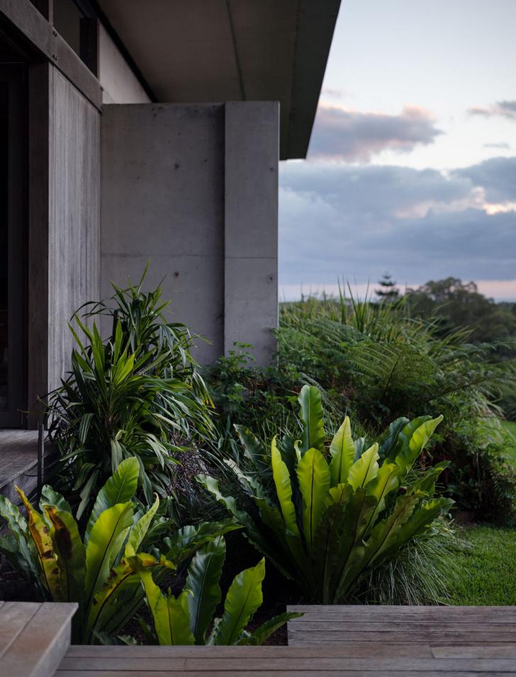 Фото №3 - Тропический сад в Австралии