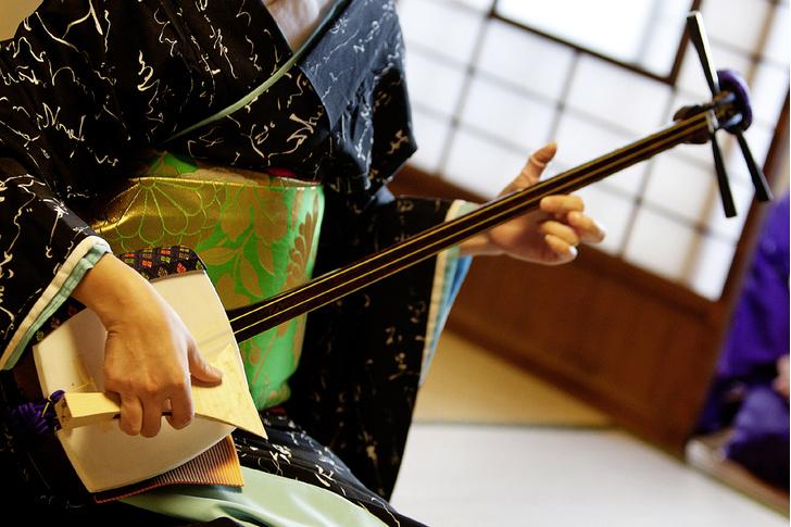 Фото №7 - Рабочий момент: под сенью сакуры в цвету