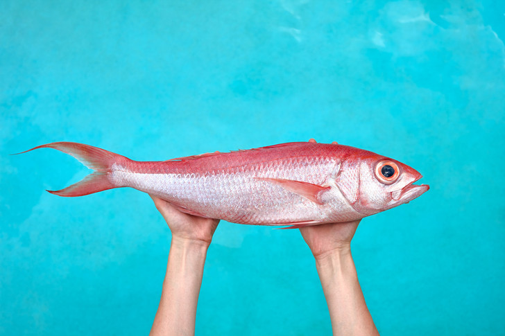 Фото №1 - Как определяют пол у рыб?