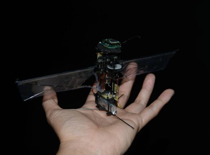 Фото №1 - Корейцы сделали робота, который копирует полет жука