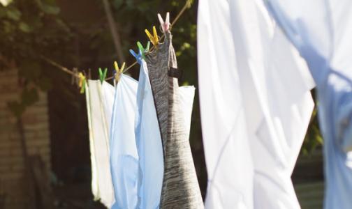 Фото №1 - Стирать вещи в экономном режиме может быть опасно для здоровья