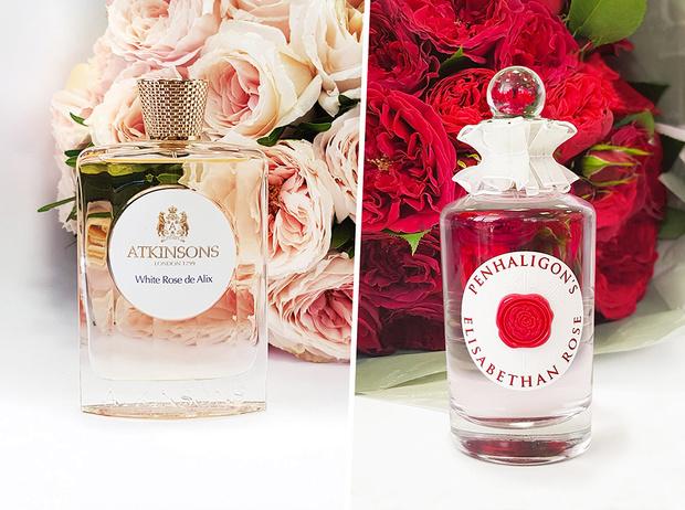 Фото №2 - Розы для Елизаветы и Александры: новое рождение двух королевских ароматов