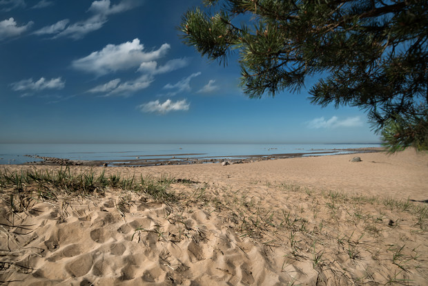 Фото №2 - «Первая линия»: курорт на берегу Финского залива