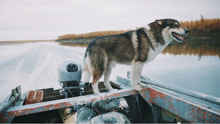 Фото №6 - Как спасти мир: документальный фильм об изменении климата