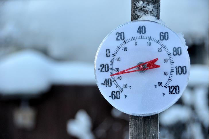 Фото №1 - От холода погибает в 20 раз больше людей, чем от жары