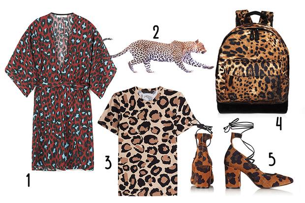 Фото №1 - Топ-10: Вещи с леопардовым принтом