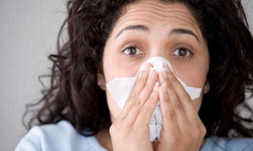 Фото №1 - Петербургские ученые создали чипы для диагностики гриппа