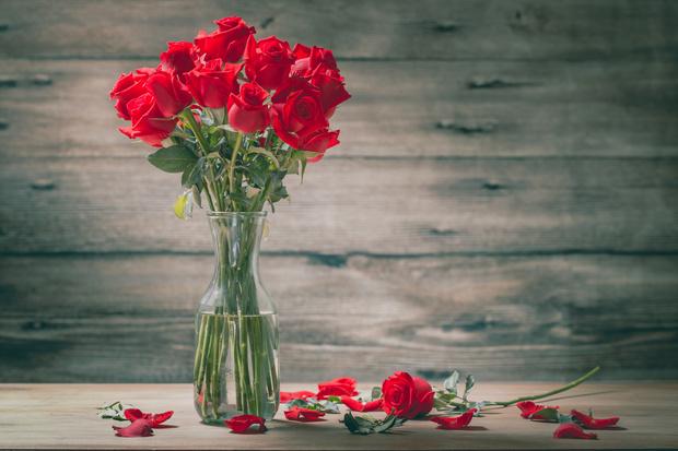 Фото №9 - Весы— роза, Рыбы— лотос: какой вы цветок по знаку зодиака