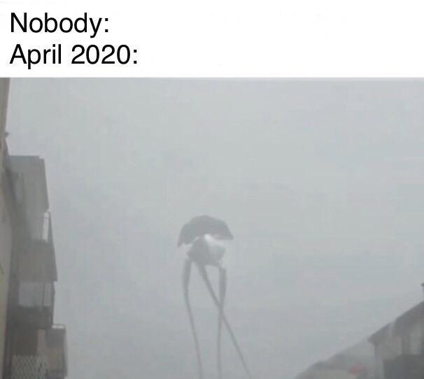 Фото №4 - Лучшие мемы про прогноз на апрель 2020 года