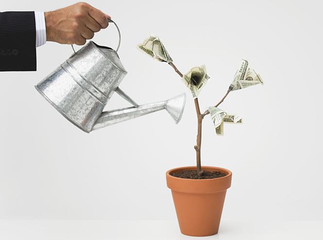 Фото №4 - Деньги– в счастье: куда тратить их сегодня