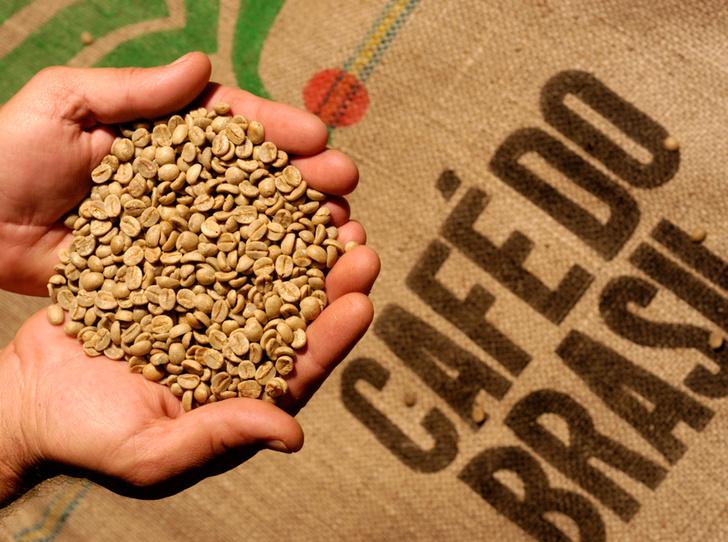 Фото №6 - 5 редких сортов кофе со всего мира