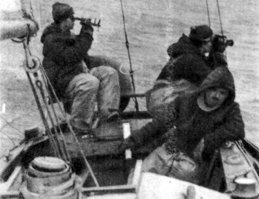 Фото №1 - Пять дней из экспедиции к Берингу