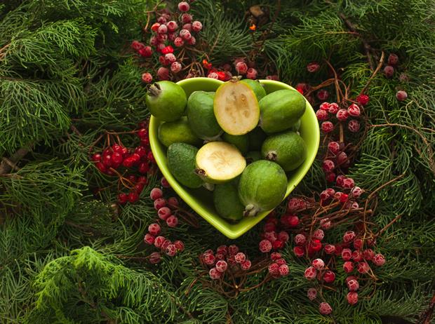 Фото №1 - Некрасив, но страшно полезен, или Почему фейхоа называют фруктом вечной молодости