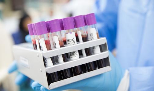 Фото №1 - Биологи: Ген, отвечающий за развитие рака, может запускать регенерацию сердца