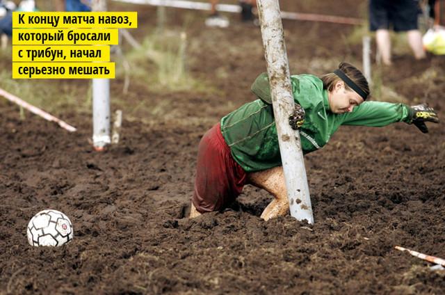 Фото №4 - 5 самых дурацких видов спорта