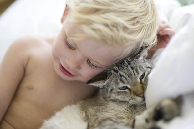 Фото №2 - Ребята и зверята: почему нельзя разрешать детям спать вместе с питомцем