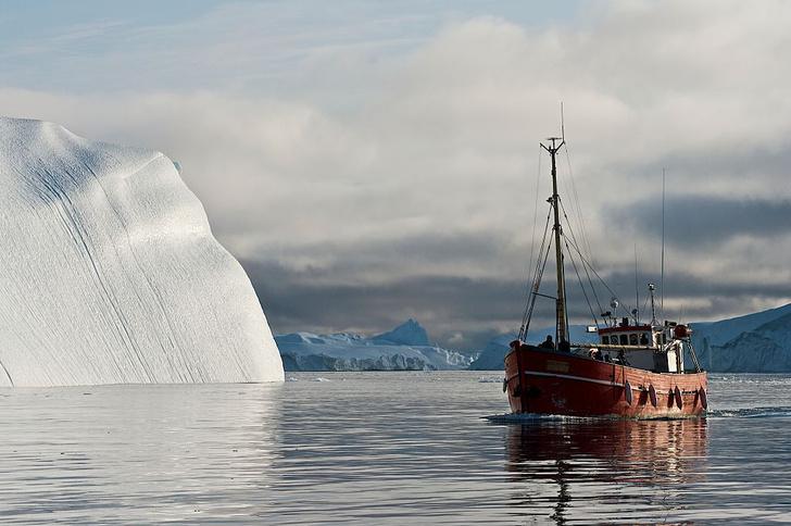 Фото №1 - В Атлантике растет число айсбергов