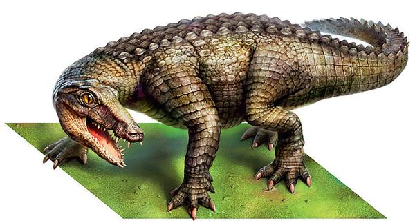 Фото №2 - Удивительная живучесть крокодильего племени