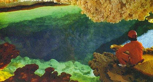 Фото №3 - Поедающие скалы