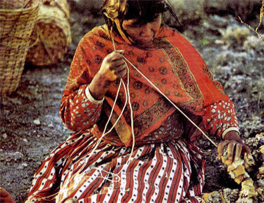 Фото №1 - Бесплодные края навахо