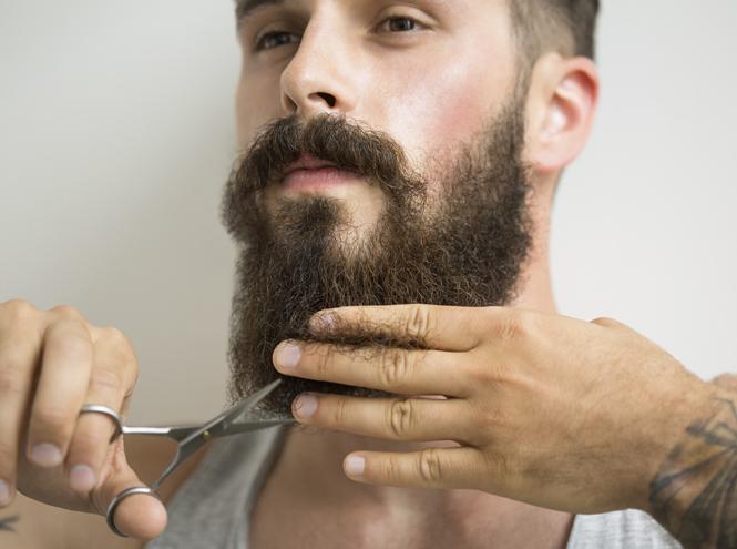 Фото №9 - Чтобы не кололась: что вам нужно знать о мужской бороде