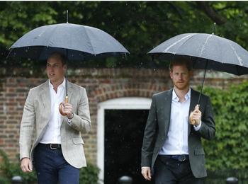 Дворецкий принцессы Дианы — о разладе между Гарри и Уильямом