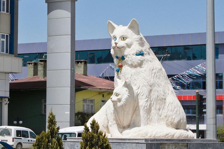 Фото №4 - Короли улиц: 9 памятников кошкам