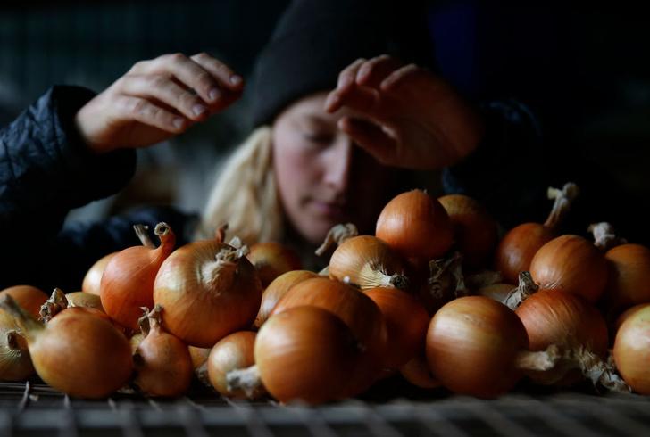 Фото №10 - Праздник вкуса с национальным колоритом: 10 фестивалей еды со всего мира