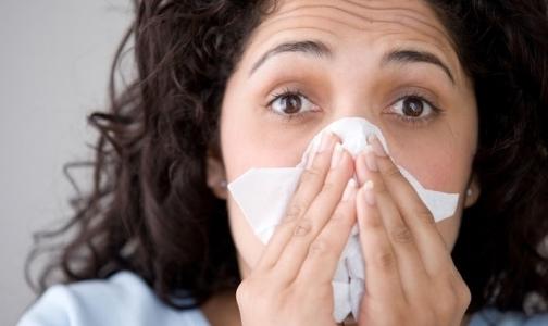 Фото №1 - В Петербурге гриппом и ОРВИ болеют неактивно