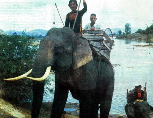 Фото №1 - Семь банов на берегу реки Кронг