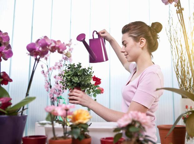 Фото №5 - 10 идей для обновления интерьера на съемной квартире
