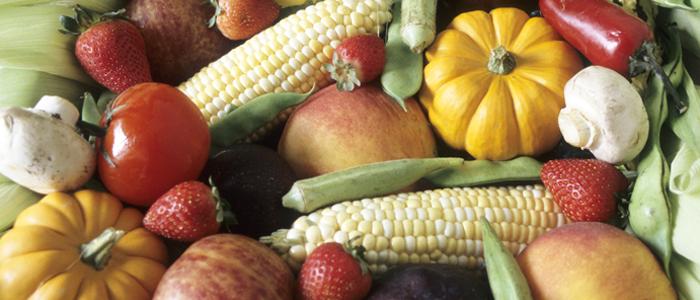 Фото №4 - Осень для гурманов: сезонные деликатесы