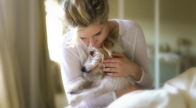 Челлендж милоты: хозяева собак разыгрывают своих питомцев