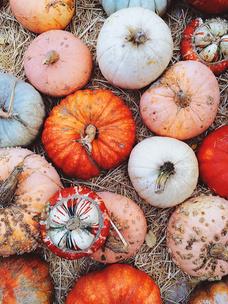 Фото №4 - Тест: Выбери тыкву, и мы опишем твою осень тремя эмодзи