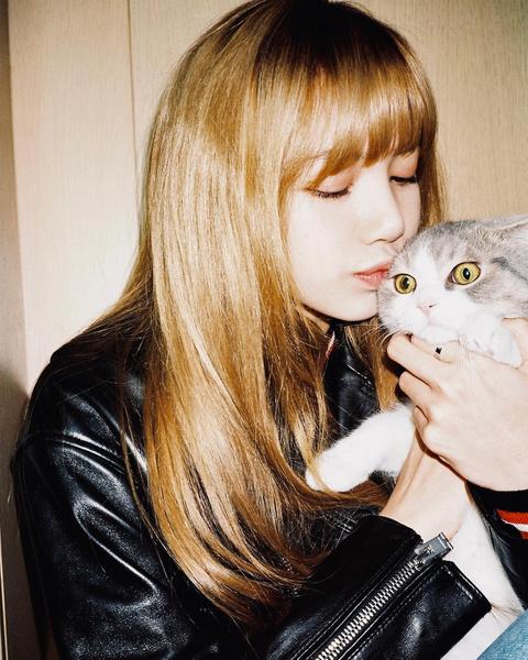Фото №5 - BLACKPINK и котики: 8 фото Лисы, на которых хочется забрать обоих себе 😍