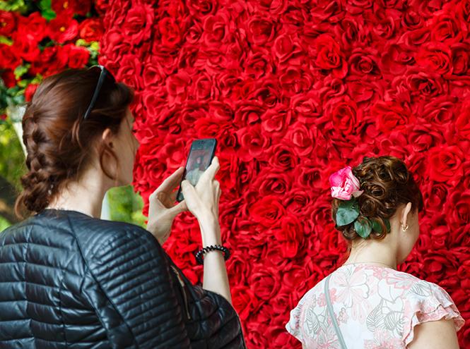 Фото №8 - Видео: как прошел фестиваль цветов Moscow Flower Show