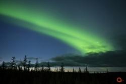 Фото №1 - ВОКРУГ СВЕТА - информационный партнёр Всероссийского фестиваля природы
